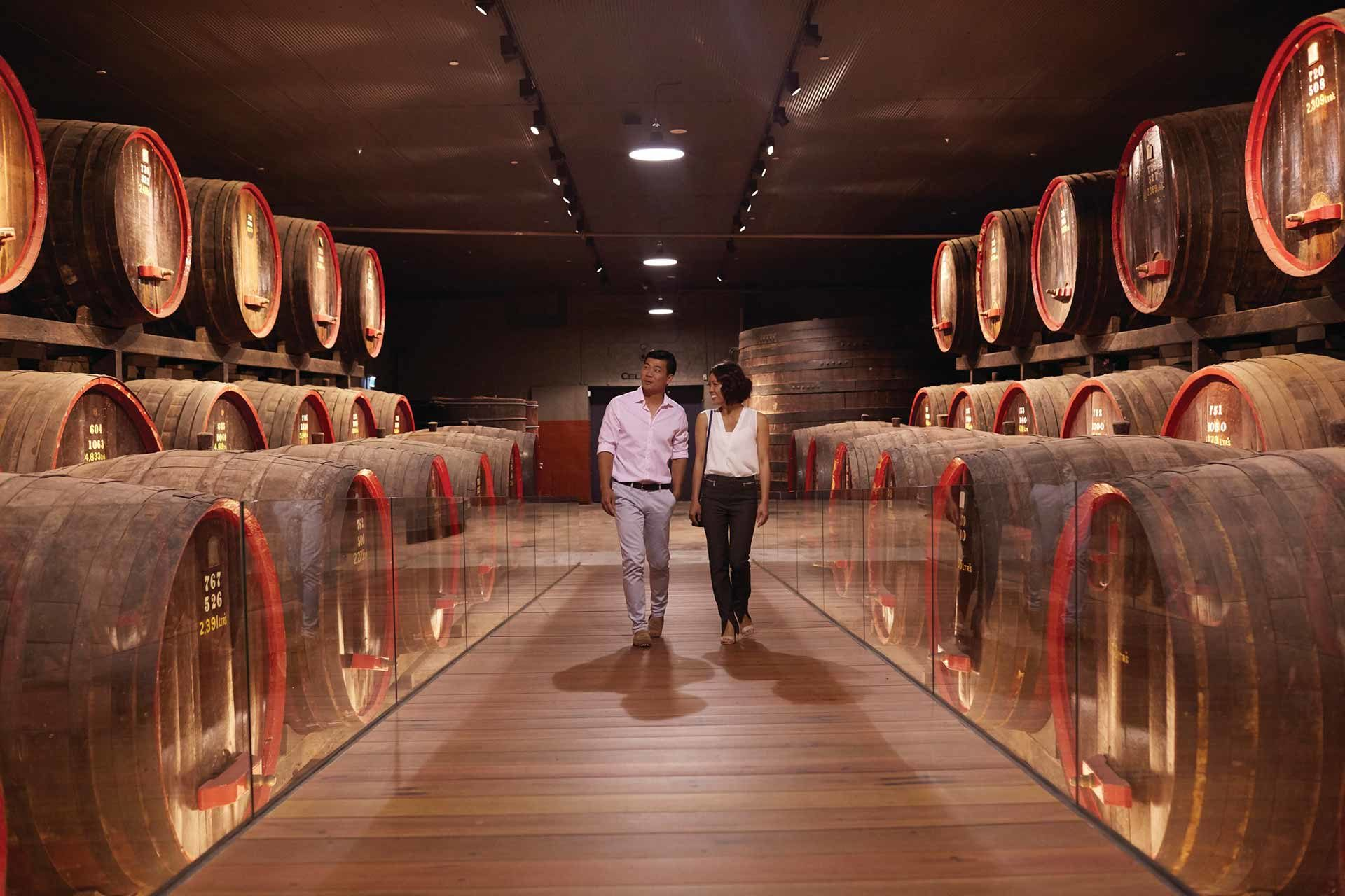Penfolds Magill Estate, South Australia / Photo: Ryan Cantwell