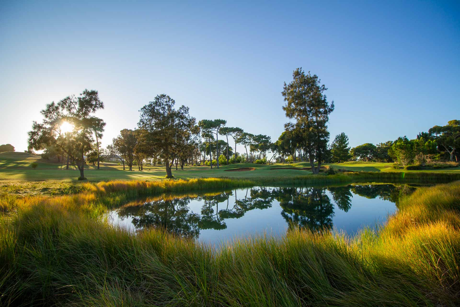 Glenelg Golf Club - Par 4, 9th Hole / Photo: David Brand