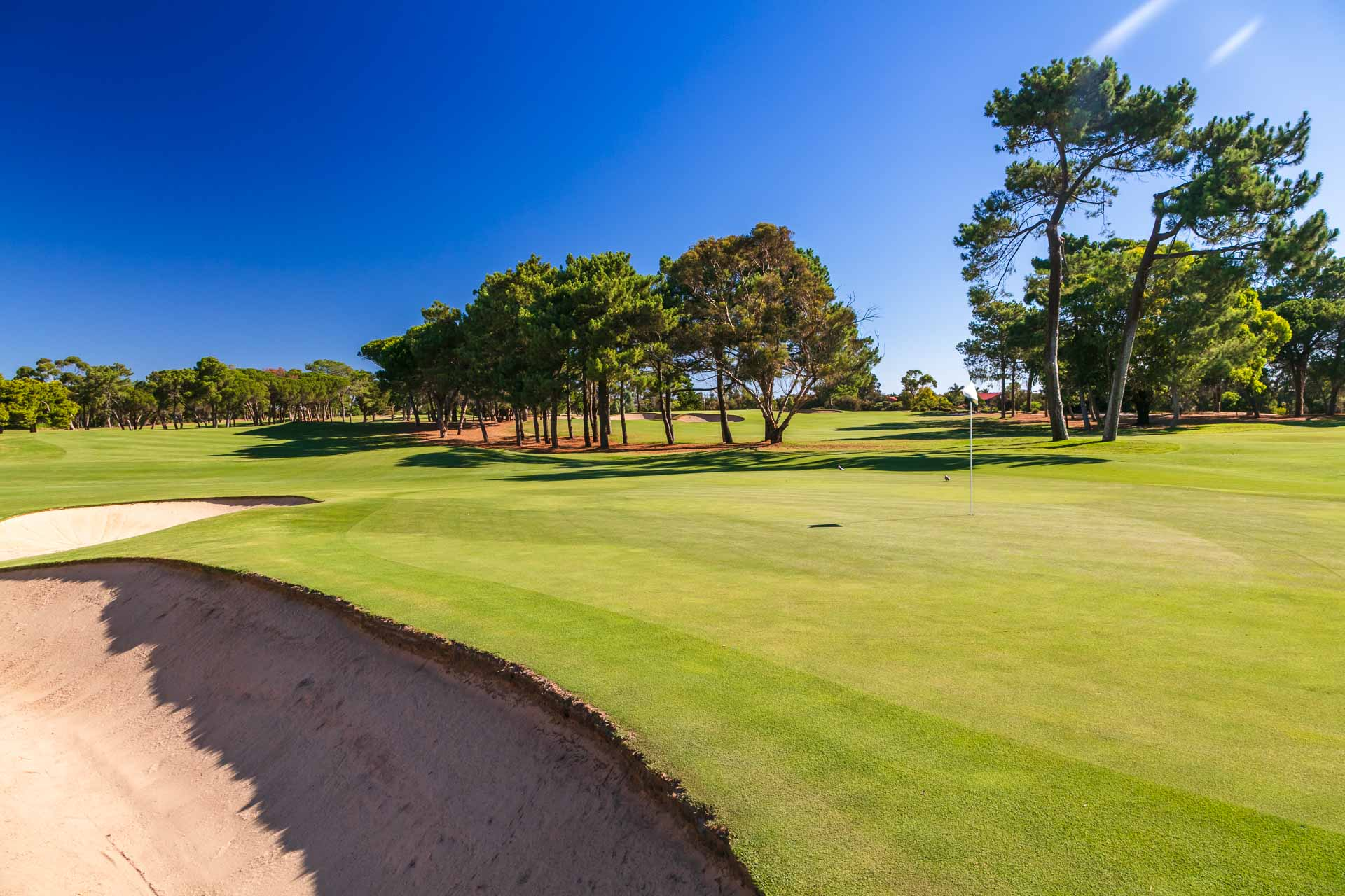 The Grange Golf Club - Par 4, 11th Hole West / Photo: David Brand