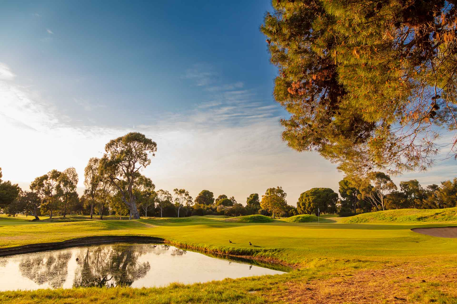 Kooyonga Golf Club - Par 4, 17th Hole / Photo: David Brand