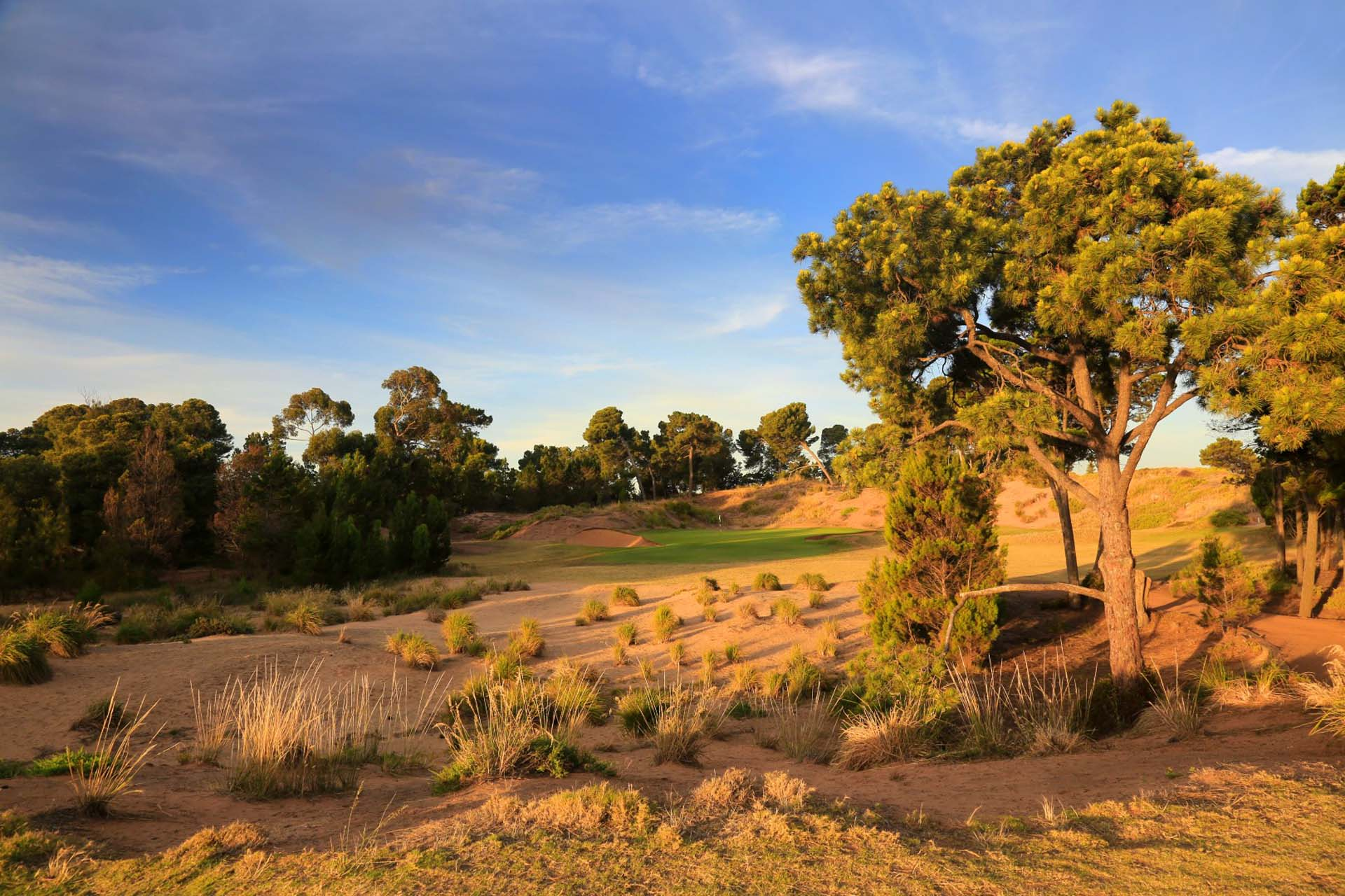 Royal Adelaide Golf Club - Par 4, 11th Hole / Photo: Gary Lisbon Golf Photography
